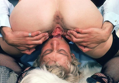 Licking a wide open pussy
